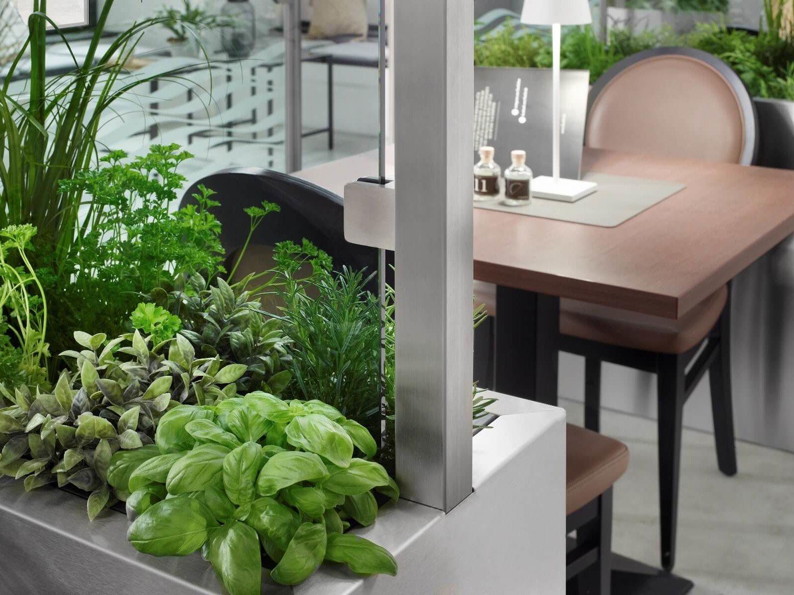 Glastrennwand bepflanzt als Raumtrenner im Restaurant