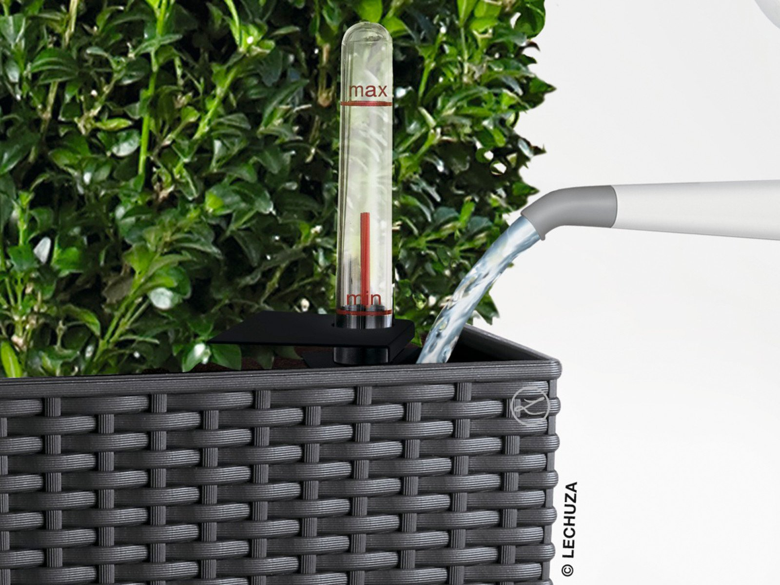 Bepflanzter Lechuza Pflanzeinsatz mit Einfüllschacht und Wasserstandsanzeige
