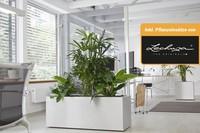 Glastrennwand mit Pflanzkasten als Trennwand Indoor Outdoor Lechuza