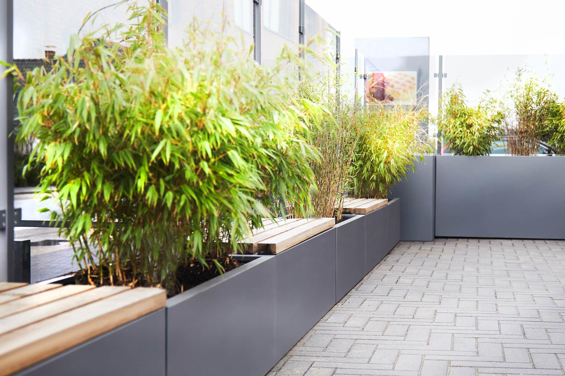 pflanzkasten-mit-sichtschutz-grau